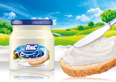 Cream Cheese Spread 500g