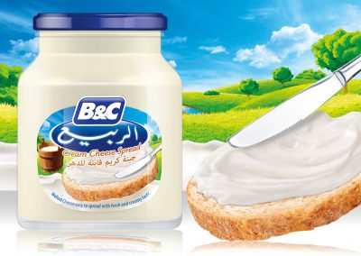 Cream Cheese Spread 910g